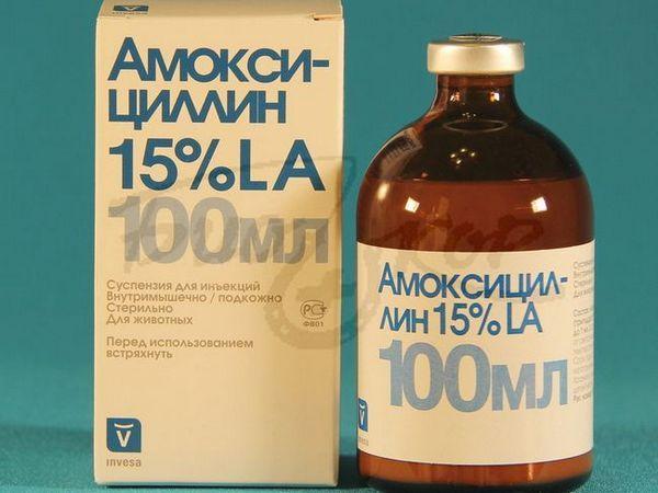 Amoxicilină 100 ml
