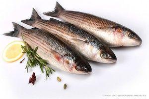 Caracteristicile ciorbei de pește