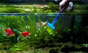 Metode de curățare a acvariului