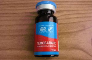 Gemobalance - un medicament cu vitamine pentru preparate injectabile la animalele de companie