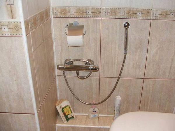 Soiuri de duș igienic