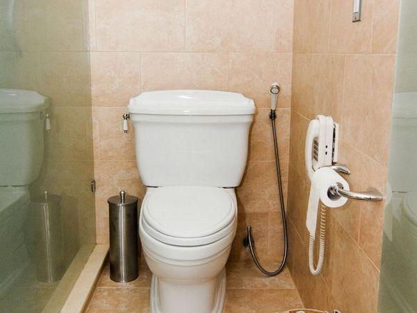 Mixer de duș igienic