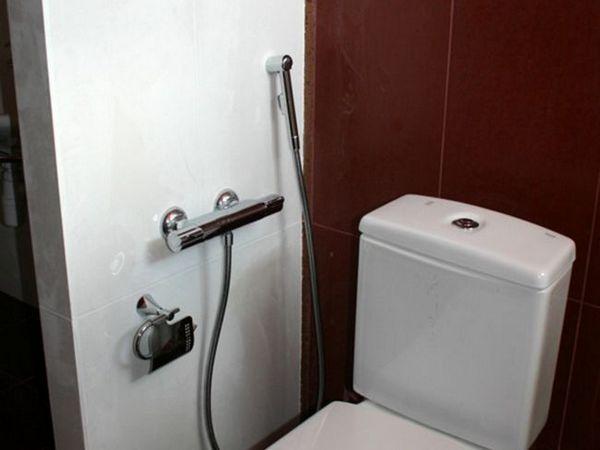 Instalarea unui duș igienic