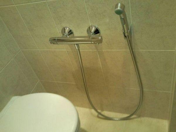 Folosind un duș igienic