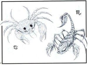 Compatibilitatea Scorpionului și a Cancerului