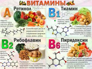 Vitaminele din masa alimentelor