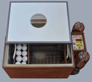 Blitz incubator-descriere