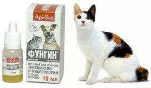 Caracteristicile aplicării medicamentului Fungin pentru pisici și câini