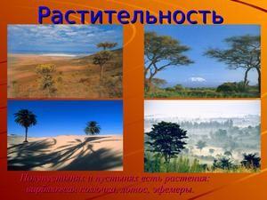 Deserturi și semi-deșerturi