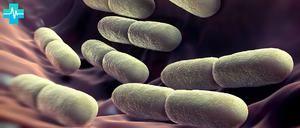 Bacteriile iodofile la copil