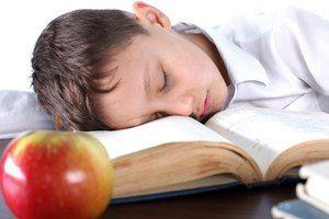 Despre ce visează școala?