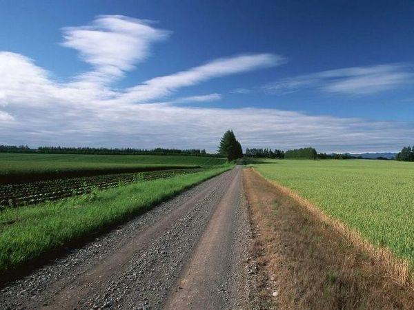 Urcați pe drum într-un vis