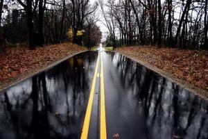 Pentru a vedea un drum umed într-un vis