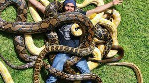 De ce șerpi