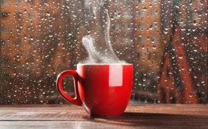 Urmărind ploaia de pe fereastra unei case confortabile, îți promit noi interese interesante