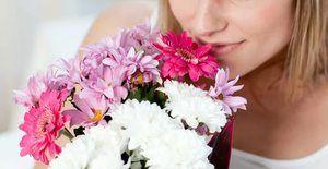 Ce visează florile, interpretarea visului