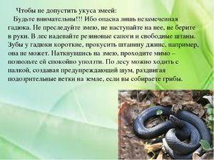 Poți sperie un șarpe