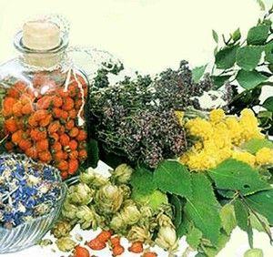 Medicina tradițională oferă o colecție de ierburi din furunculoză.