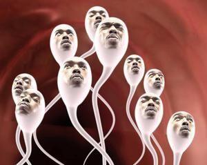Calitatea spermei