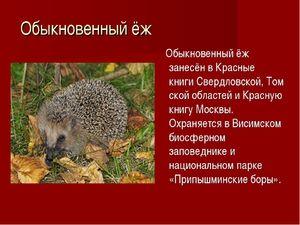 Cartea roșie și lista animalelor dispărute