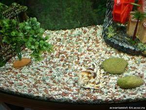 Pământ de nisip pentru acvariu