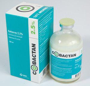 Kobaktan. Instrucțiuni de utilizare pentru pisici
