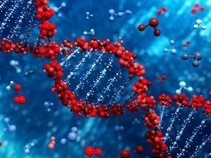 Influența geneticii