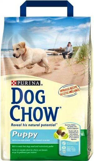 Câine de câine pentru pui