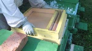 Soiuri de alimentatoare pentru albine