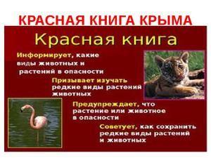 Plantele și animalele din Cartea Roșie din Crimeea
