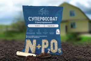 Îngrășăminte superfosfate