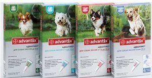 Preparate împotriva căpușelor Advantix pentru câini