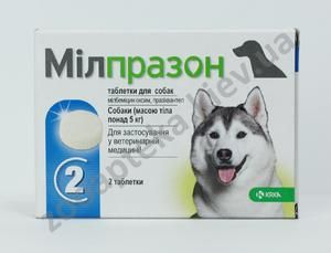 Milprazona este un agent antihelmintic cu spectru larg pentru pisici și câini