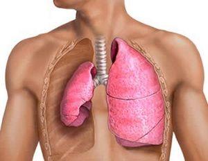 Boala plămânilor