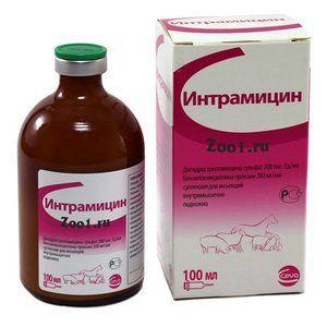 antibiotic pentru pisici - Intramycin