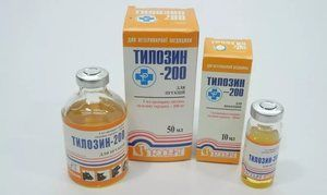 antibiotic pentru pisici - Topilină