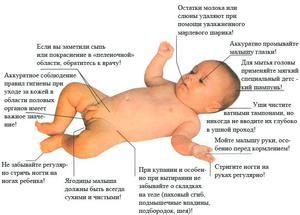 Cum să aveți grijă de un nou-născut