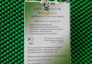 Lactobifadolul pentru câini - cum să îl folosiți corect