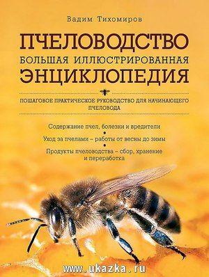 Sfaturi de apicultori experimentați