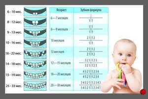 Cum se taie dintii