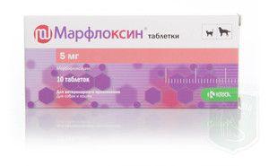 marfloxin pentru pisici