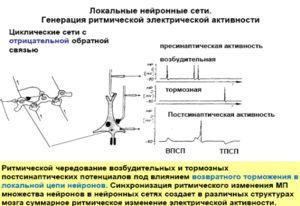 Tipuri de frânare în rețele neuronale - o diagramă vizuală