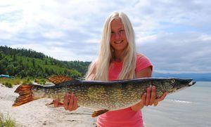 Metode de pescuit