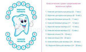 Diferite scheme de dentiție