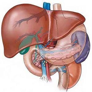 Toate bolile hepatice