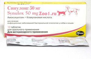 Medicină pentru câini sinulocilor