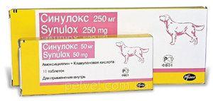 Cum să utilizați preparatele sinulocale