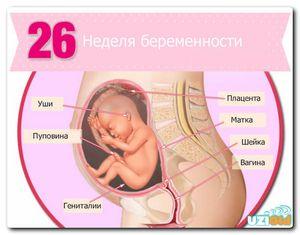 Cum să vezi un doctor în timpul sarcinii