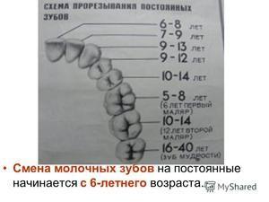 Cum se schimbă dinții copiilor?