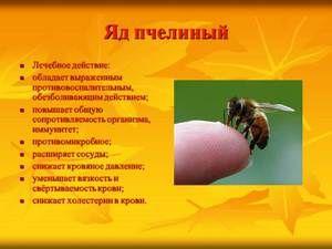Beneficiile veninului de albine